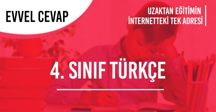4. Sınıf Türkçe Test Çöz