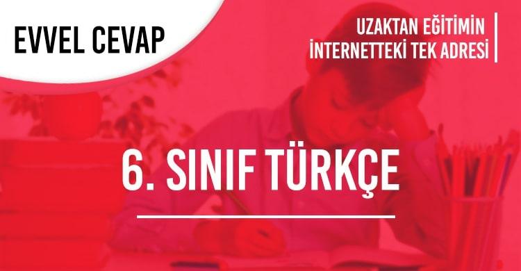 6. Sınıf Türkçe Test Çöz